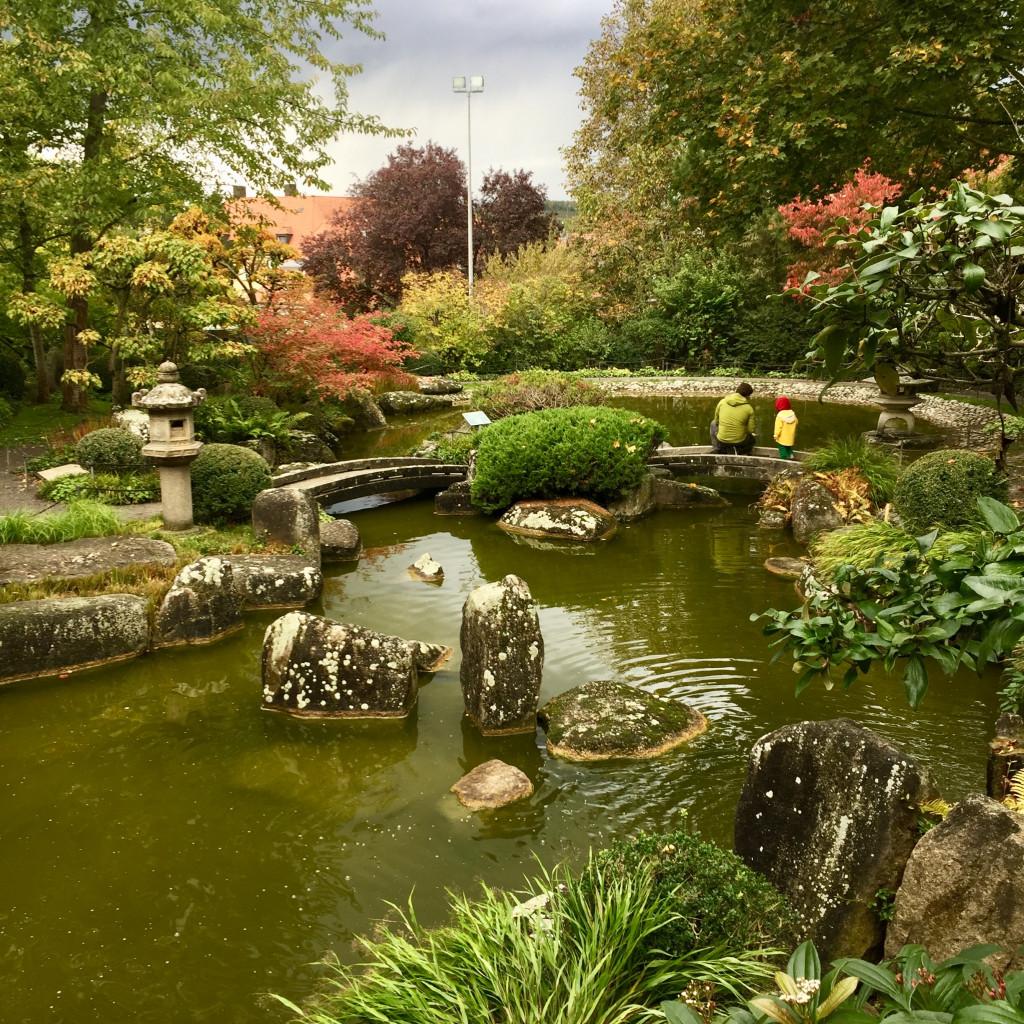 Japanischer Garten in Würzburg
