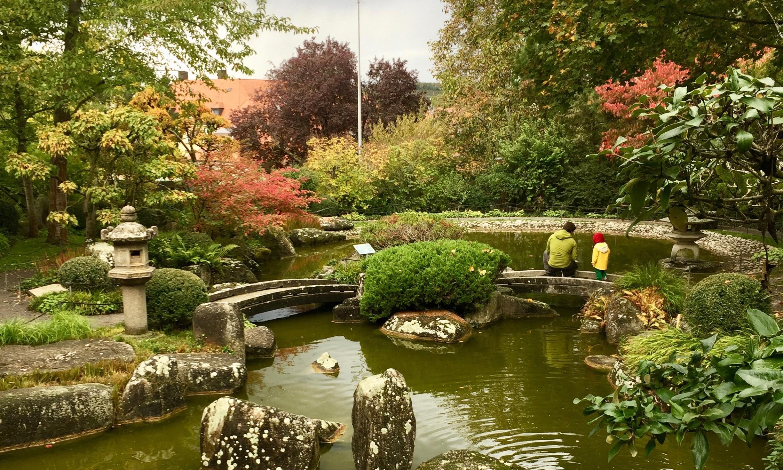 Japanischer Garten in Würzbur